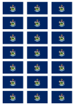 Maine Flag Stickers - 21 per sheet